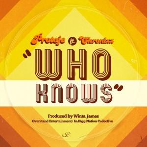 WHO KNOWS_single art_web